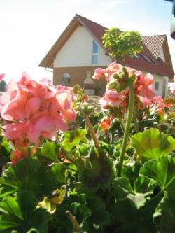 Au jardin des quatre saisons g te eckwersheim bas rhin for Jardin 4 saisons eckwersheim