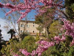 Holiday rental near Forcaquier in Provence.