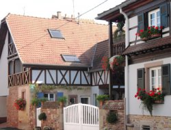 Holiday home close to Strasbourg in Alsace. near Obernai