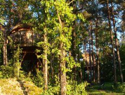 Vacances insolite en cabane perchée