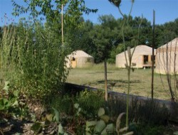Unusual holiday in yurts or teepees in the Languedoc Roussillon near Boisset et Gaujac