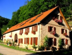 Holiday home for a group in Alsace.