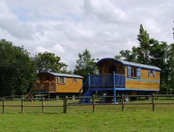 Stay in a gypsy caravan in Brittany. near Combourg