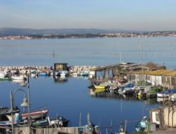 location  Herault n°11295