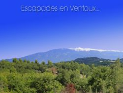Holiday cottage near Luberon and Ventoux
