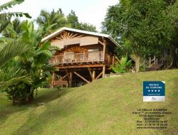 Holiday cottage in the Caraibbe.