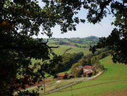 Holiday cottages near Millau and Roquefort in France near Alrance