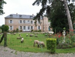 B & B in a castle of the Picardy in France. near Le Crotoy