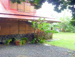 Vacances en Case Cr�ole en Guadeloupe