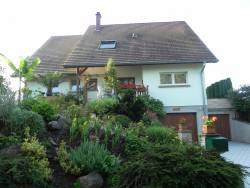 Bed and Breakfast in Alsace, France. near Dambach la Ville