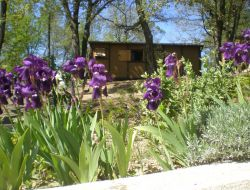 Holiday homes in the Gard, Languedoc Roussillon. near Mejannes les Ales