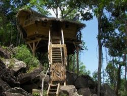 Vacances en cabanes perch�es en Guadeloupe.