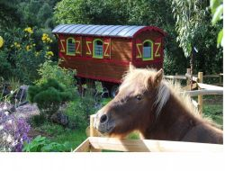 Unusual holidays in gypsy caravan in Normandy