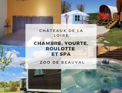 B&B near Tours and Blois in France. near Vallières les Grandes