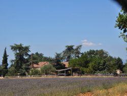 Location de gites ruraux en Haute Provence.