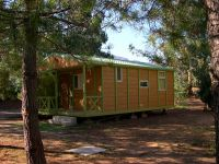 camping Haute Corse n°13269