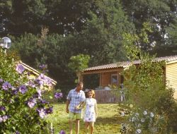 Holiday village near Carcassonne in France. near Montmaur