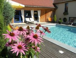 Gites with swimming pool in the Gard, Languedoc Roussillon.