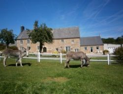 Holiday home in Manche, Normandy near Champ du Boult