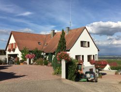 Holiday accommodation near Colmar in Alsace.