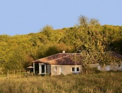 B&B with pool in the Lot, Midi Pyrenees. near Gramat