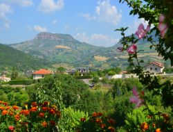 Holiday cottages near Millau in France. near Castelnau Pegayrols