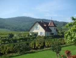 Holiday rental near Colmar in Alsace