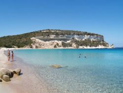 camping Corse n°15313