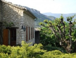 Holiday home near Nyons and Avignon in Provence.