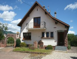 Holiday home near Colmar in the center of Alsace near Wildersbach
