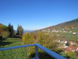 Holiday home near Strasbourg and Colmar in Alsace. near Wildersbach