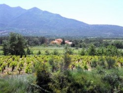 Holiday accommodation near Perpignan in the south of France near Céret