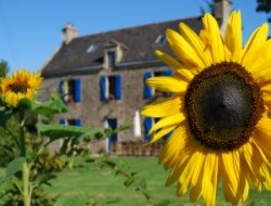 Holiday homes with heated pool in Brittany near Bieuzy les Eaux