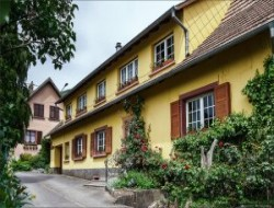Holiday rentals in Alsace, France.