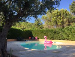Holiday home with private pool in the Languedoc Roussllon near Albieres