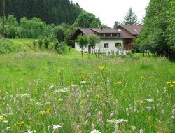 Gîtes a louer dans les Vosges.