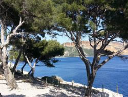 Rental in Cassis - 16833
