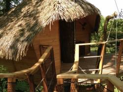 Stay in perched huts in the trees, in Anjou, France. near Chalonnes sur Loire