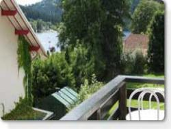 Location d'appartement et studio a Gerardmer.