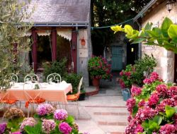 Charming B&B near the Chateaux de la Loire.