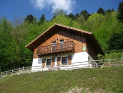 chalet rental in Le Mesnil in the Vosges