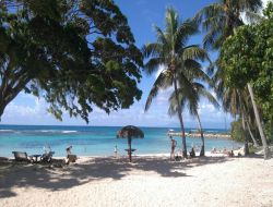 promos vacances pas cher Guadeloupe n°17331