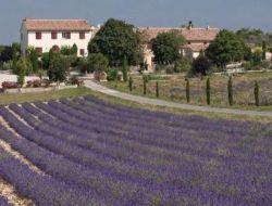 Gîtes de vacances à St Jurs en Haute Provence.