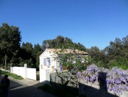 Gîte de vacances à louer en Haute Corse.