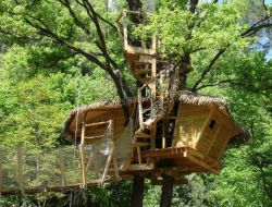 Unusual stay in a tree house in the Var, Provence.