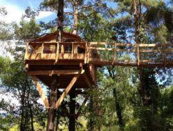 Location de cabanes dans les arbres en Haute Provence.