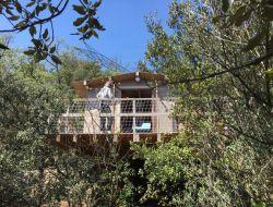 Séjour insolite en cabane dans les arbres dans le Var