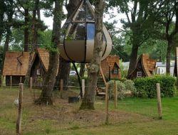 Séjour insolite en cabane dans le Morbihan.