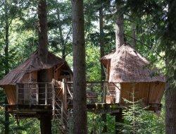 Séjour insolite en cabane perchée dans Ardèche.