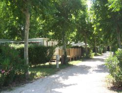 camping Provence Alpes Cote Azur n°18468